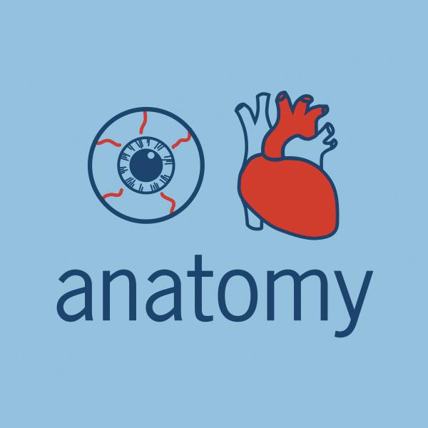 i-heart-anatomy-blue-art