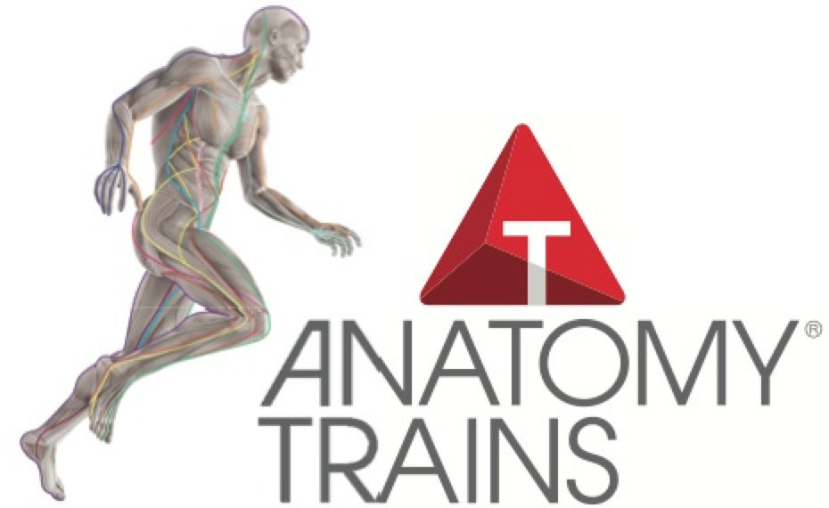 Anatomy Trains logo
